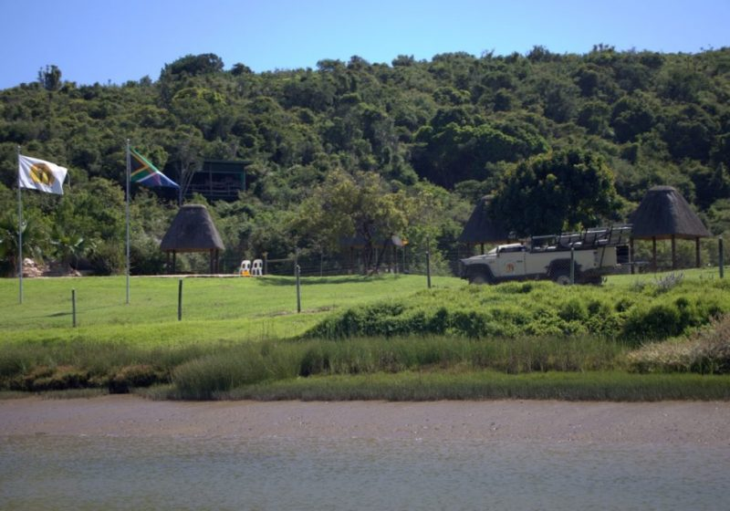 mansfield river cruises port alfred