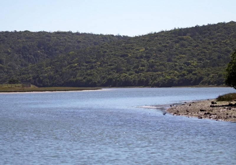 river cruises port alfred